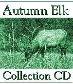 Autumn Elk Photography Collection CD
